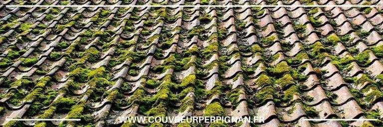 Pose de gouttière à Bompas, 66430  en Pyrénées-Orientales